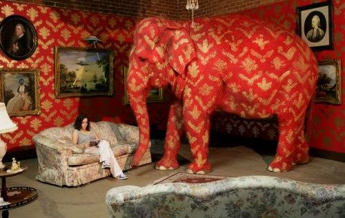 elefantenella stanza
