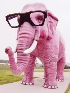 foto-elefante-rosa-nb19555