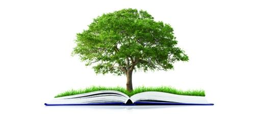 libro albero